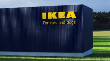 Attention Animal Lovers: IKEA Has Launched A Pet Furniture Collection
