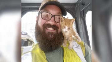 Tiny Kitten Thinks The Bearded Guy That Rescued Him Is His Mom