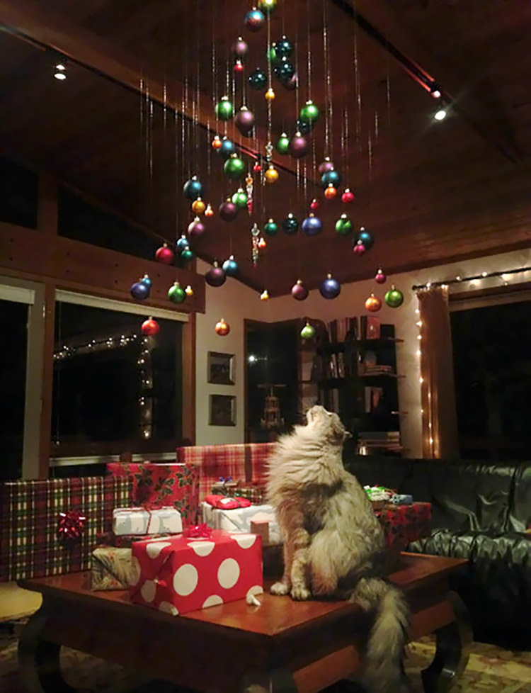 people-protect-christmas-from-pets