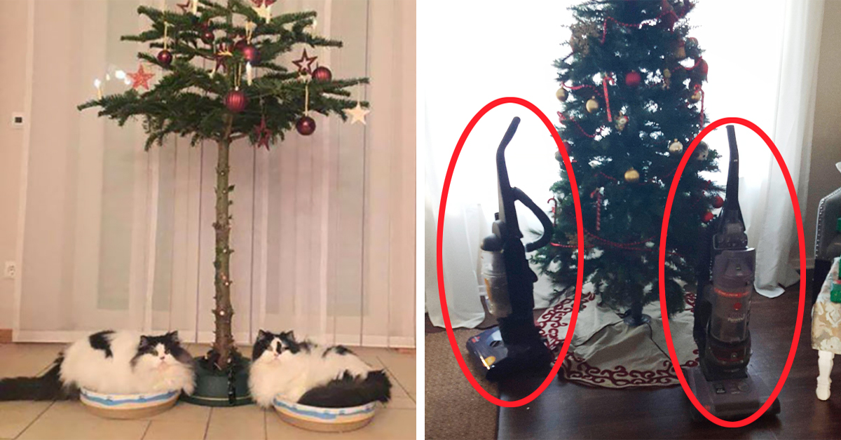 15 Incredible Ways People Protected Christmas Decorations