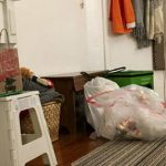 People Couldn't Find The Cat In This Photo, So Her Owner Shared A Whole Gallery Of Her Ninja Cat